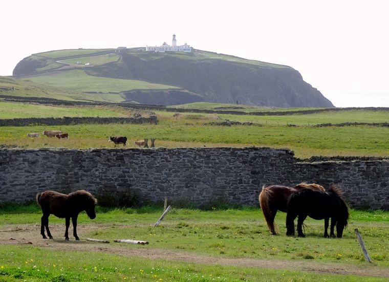 052.  Lerwick, Shetland Islands