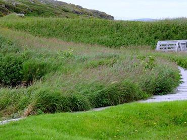 072. St. Andrews, Newfoundland