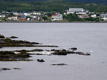 105. St. Andrews, Newfoundland