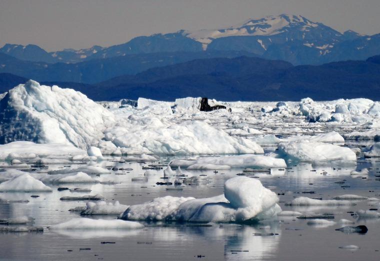 167. Qaqortoq, Greenland