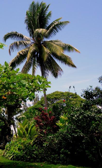 107. Papeete, Tahiti