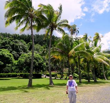 118. Papeete, Tahiti
