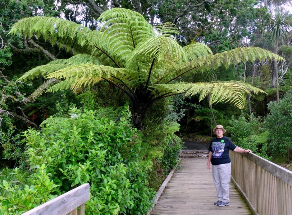 192. Waitangi, New Zealand