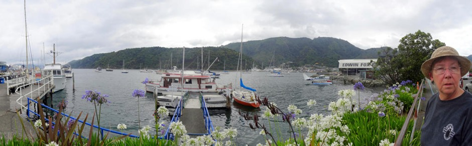 1b. Picton, New Zealand_stitch