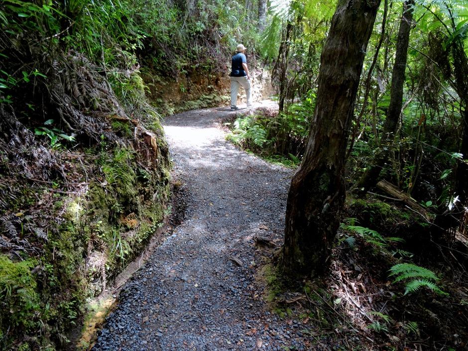 228. Waitangi, New Zealand