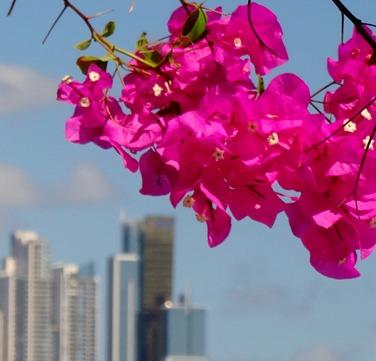 32. Panama City, Panama
