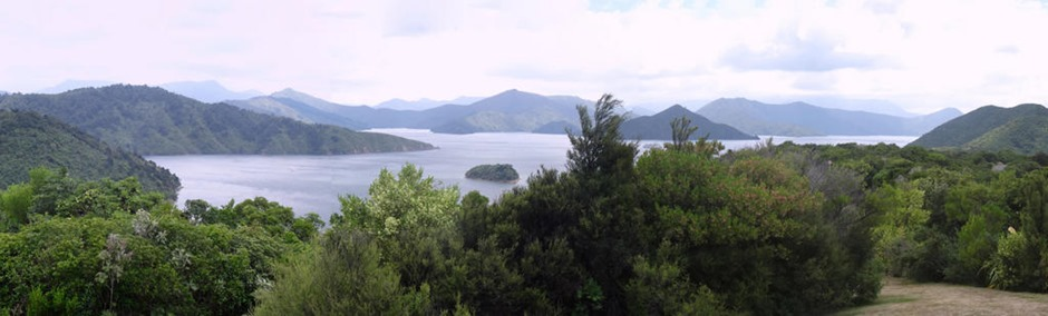 54aa. Picton, New Zealand_stitch