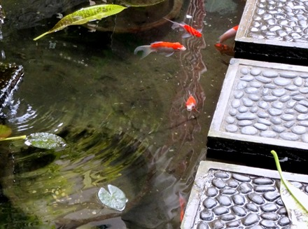 252. Bali, Indonesia