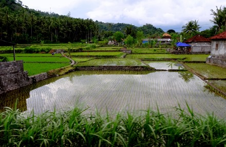 296. Bali, Indonesia