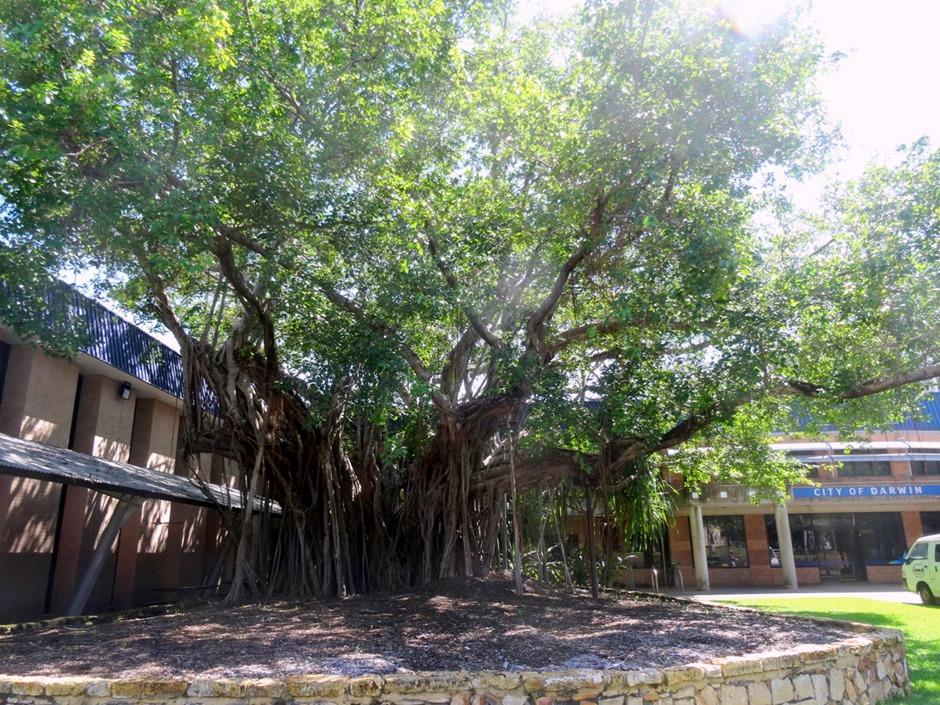 4. Darwin, Australia