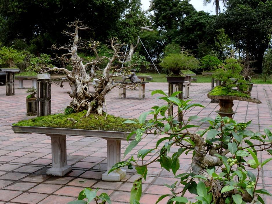48. Danang (Hue), Vietnam (Day 1)