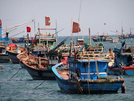 184. Danang (Hoi An), Vietnam (Day 2)