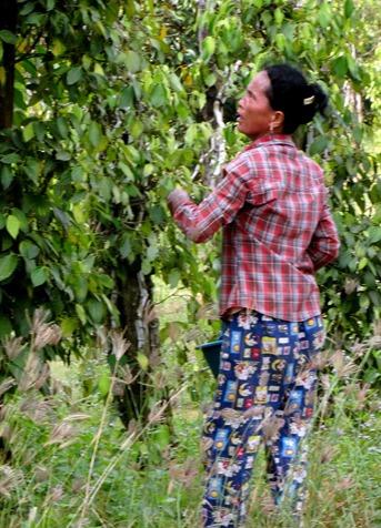 95. Sihanoukville, Cambodia