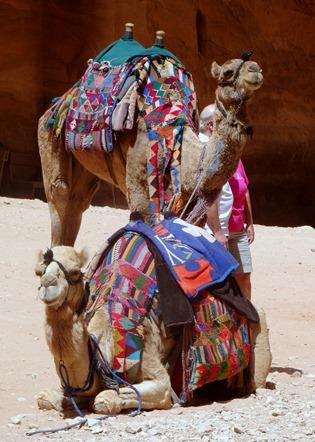 105. al-Aqaba, Jordan (Petra & Wadi Rum)