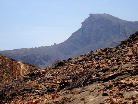120. Salalah, Oman