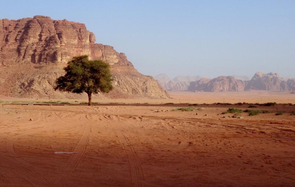 216. al-Aqaba, Jordan (Petra & Wadi Rum)
