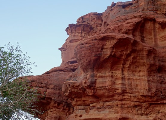 280. al-Aqaba, Jordan (Petra & Wadi Rum)