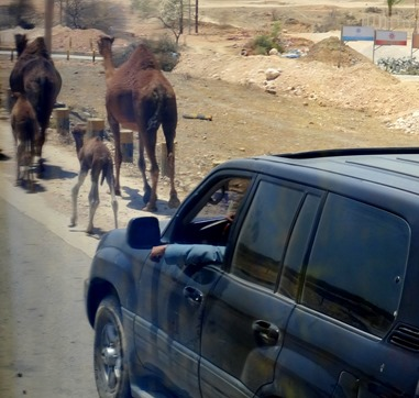 84. Salalah, Oman