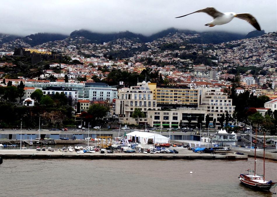 165. Funchal, Madeira