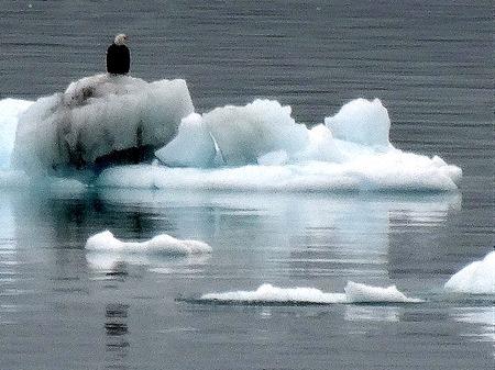 23. June 11 Glacier Baya