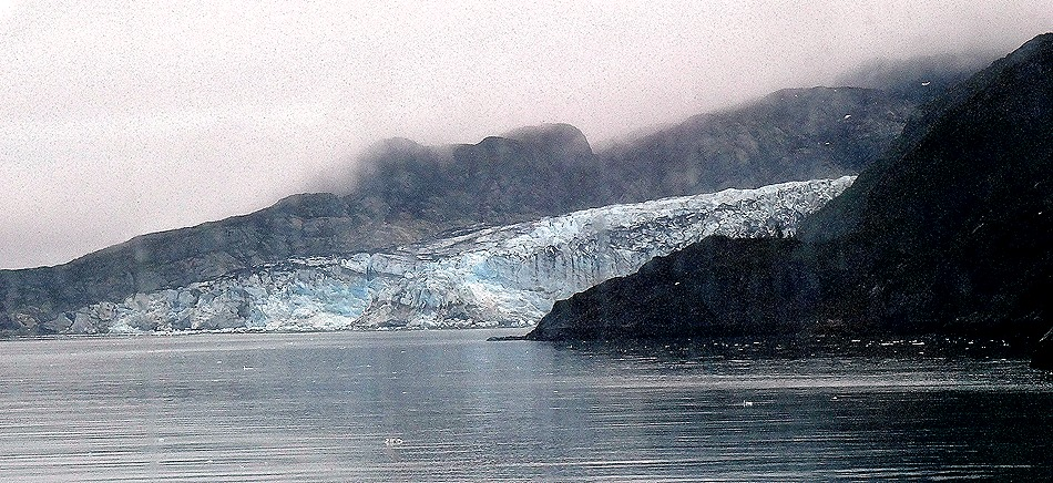 5. June 11 Glacier Bay