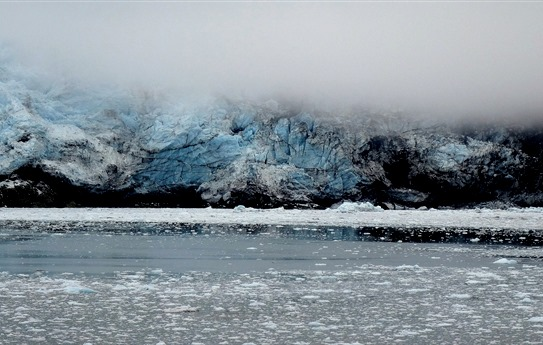 80. June 11 Glacier Bay