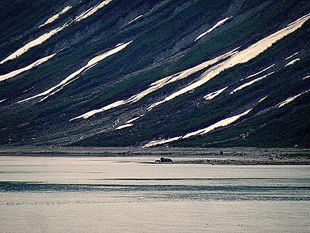 96. June 11 Glacier Bay