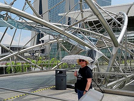 270. Singapore (Day 2)