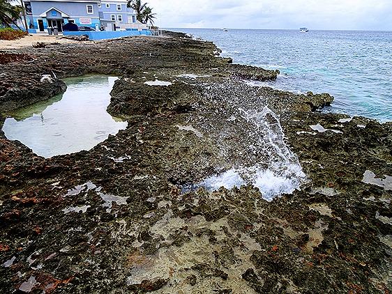 72. Grand Cayman