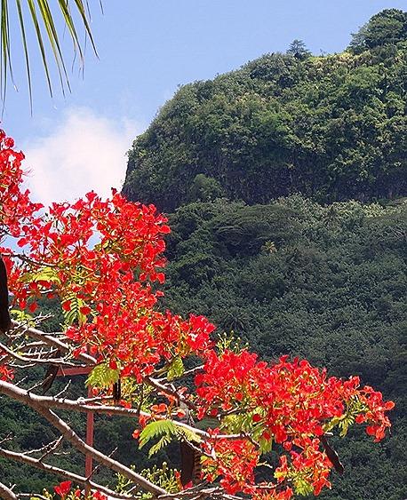 101. Bora Bora