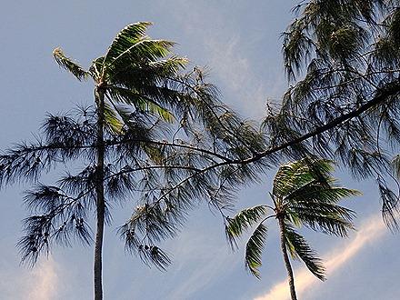 25. Tahiti