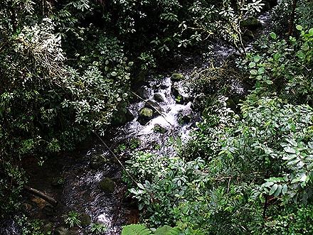 58.  Puerto Limon, Costa  Rica