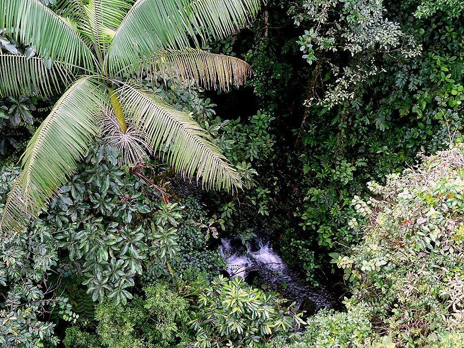 88.  Puerto Limon, Costa  Rica