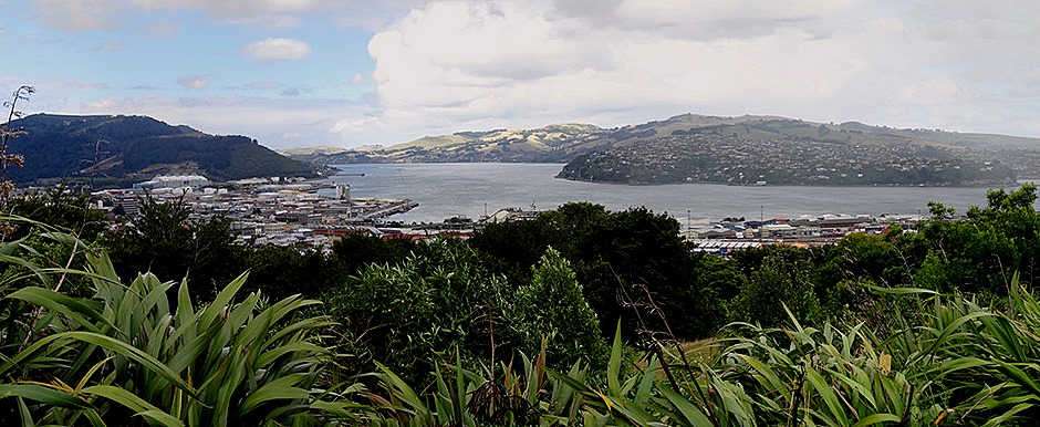 110a. Dunedin, New Zealand_stitch