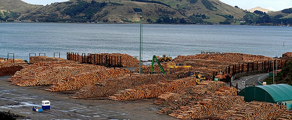 120a. Dunedin, New Zealand_stitch