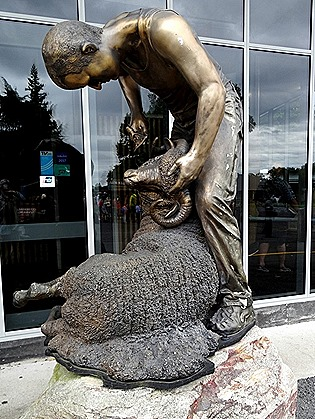 144. Tauranga (Rotarua), New Zealand