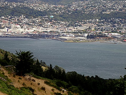 46. Dunedin, New Zealand