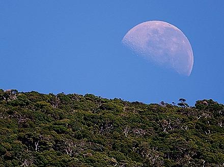 51. Fjordland National Park, New Zealand