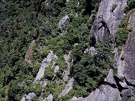 92. Fjordland National Park, New Zealand