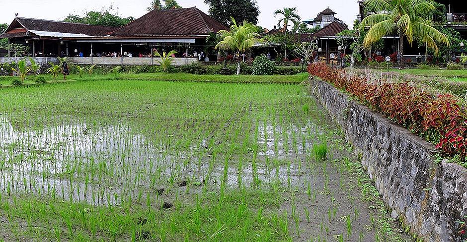 103a. Benoa, Bali, Day 2_stitch