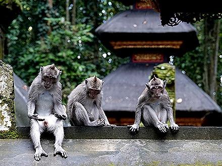 130. Benoa, Bali, Day 1