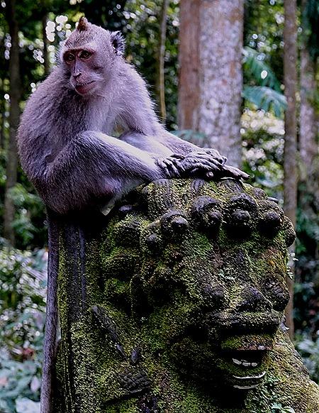 133a. Benoa, Bali, Day 1