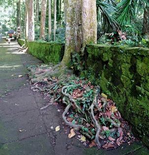 138a. Benoa, Bali, Day 1_stitch