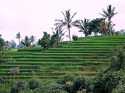 246. Benoa, Bali, Day 1
