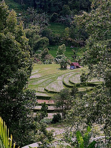 258a. Benoa, Bali, Day 1_stitch