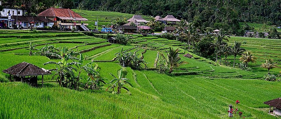 281a. Benoa, Bali, Day 1_stitch