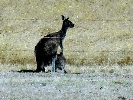 61. Albany, Australia