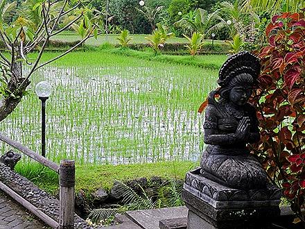 95. Benoa, Bali, Day 2