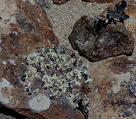114a. Walvis Bay, Namibia080418