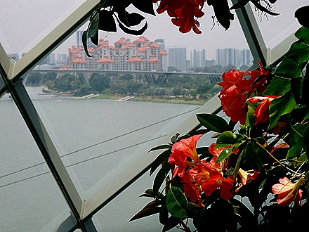 211. Singapore (Day 2)